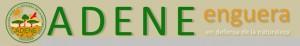 logo-adene.jpg