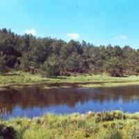 Camino del Caroche 1 (Bicorp) S.Sánchez