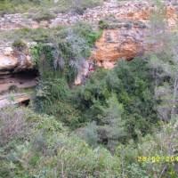 Barranco Carrasca 02052010 009