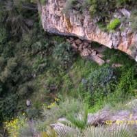 Barranco Carrasca 02052010 024