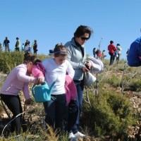 DIA DEL ARBOL 2011 035