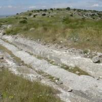 Imagen 316