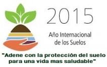 año inter del suelo 2015