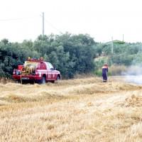 incendio rural 14.06.2015 007