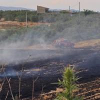incendio rural 14.06.2015 008