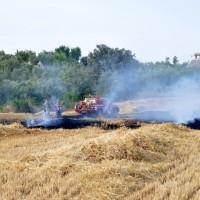 incendio rural 14.06.2015 010