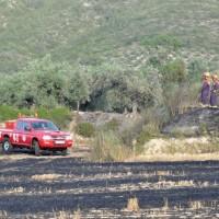 incendio rural 14.06.2015 012