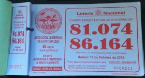 loteria 13-02-16